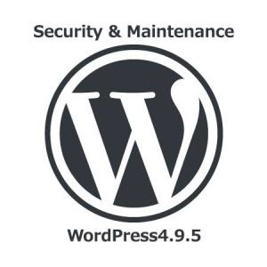 Security & Maintenance WordPress 4.9.5